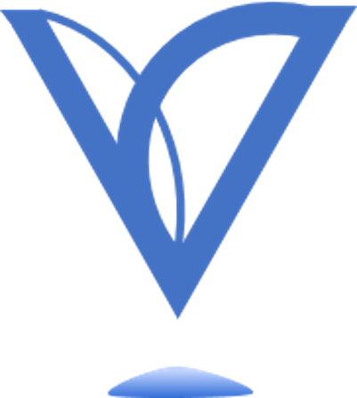 Visuals Consulting logo blue